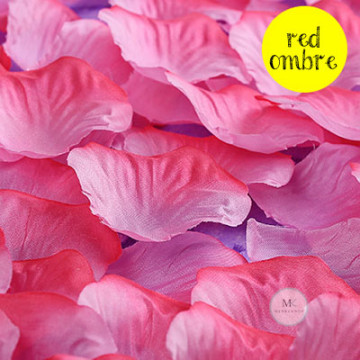 Rose Flower Petals [Red Ombre] image