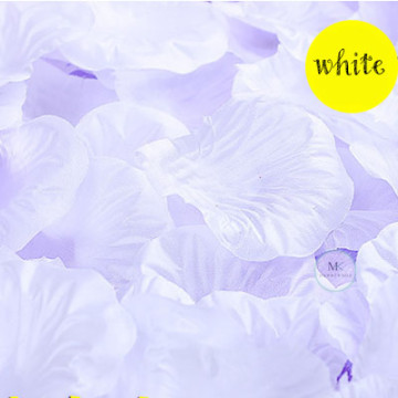 Rose Flower Petals [White] image