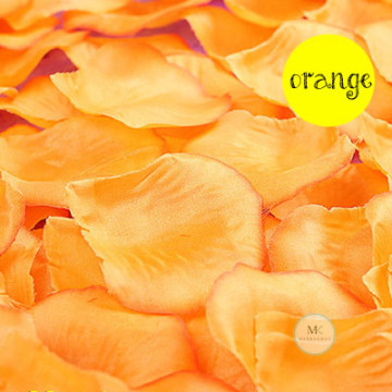 Rose Flower Petals [Orange] image