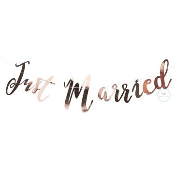 Just Married Party Banner image