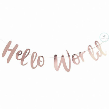 Hello World Party Banner image