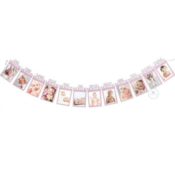 12 Month Photo Frame Banner Pink image